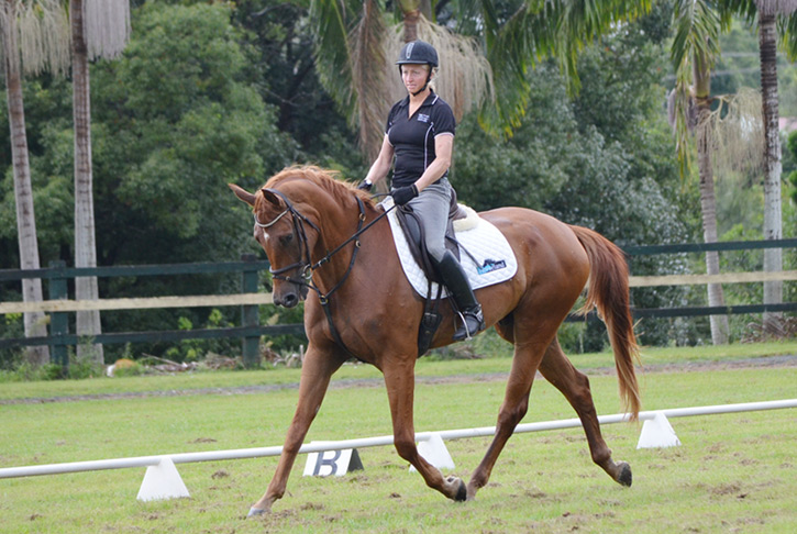 A Sydney Boy competing at a training day in Bangalow, 16/02/2013
