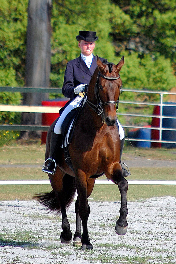 A'Seduction competing at the Summerland Dressage Group Championships, Bangalow 31.09.2013