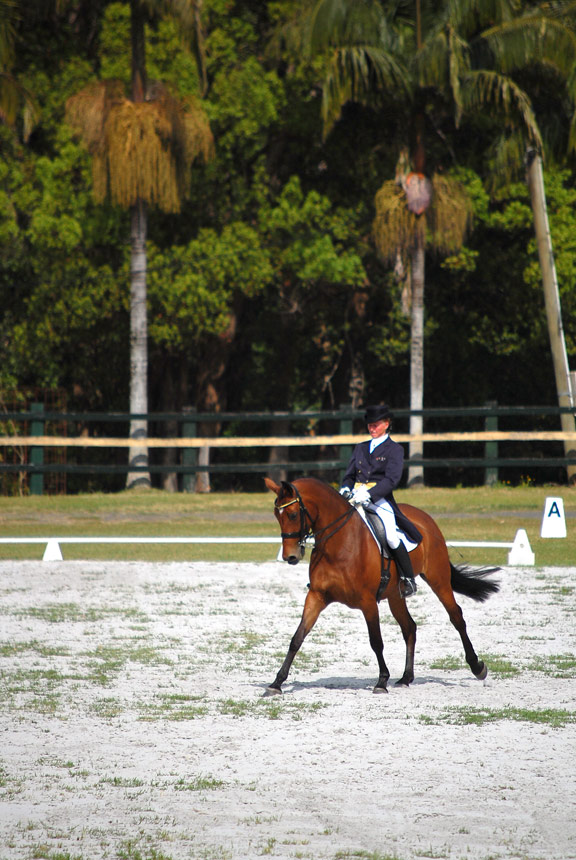A Spider Bite in the Advanced, Summerland Dressage Group Championships, 31.08.2013