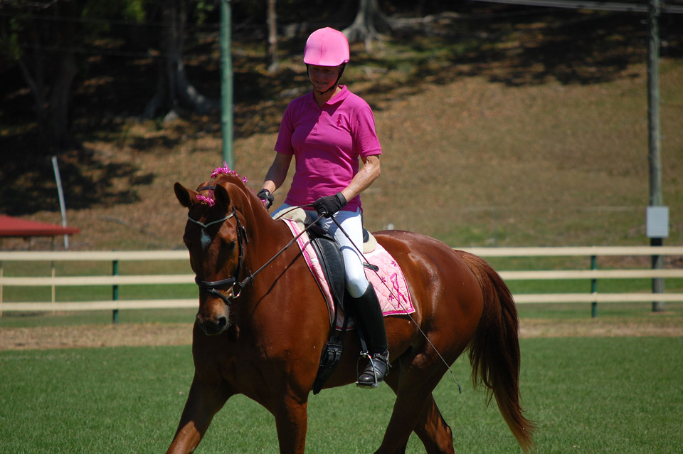 "Sally Evans on Sydney at the ""Power of Pink Dressage"" of the Tweed Valley Equestrian Group in Murwillumbah in October 2013"