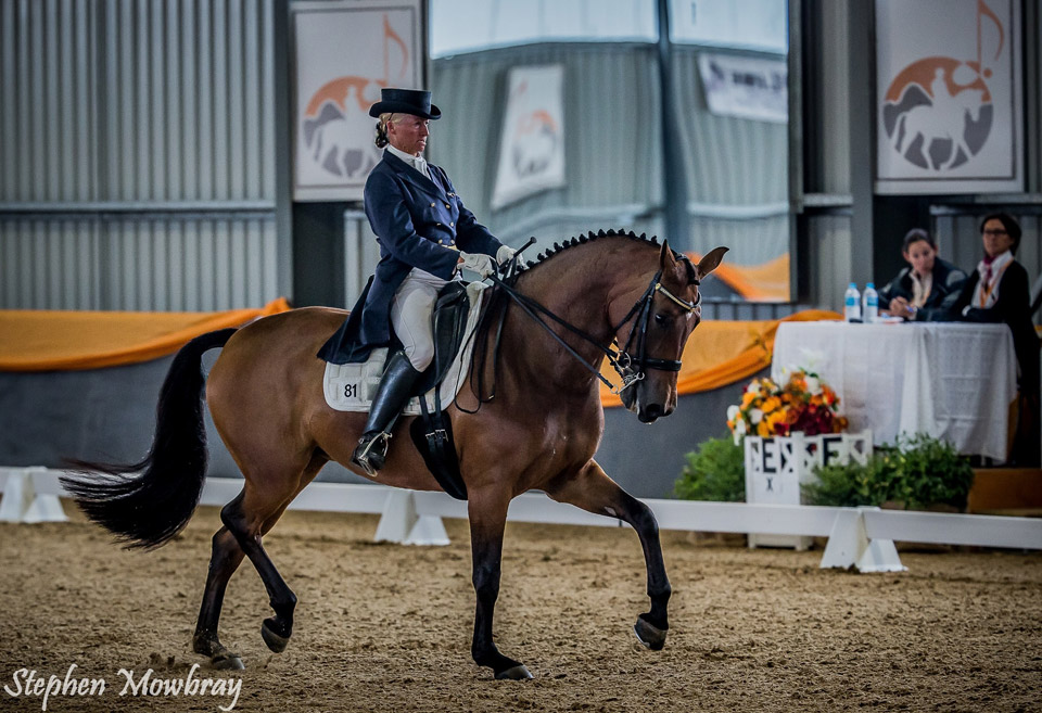CC_at-Dressage-with-Altitude_2014_01_s