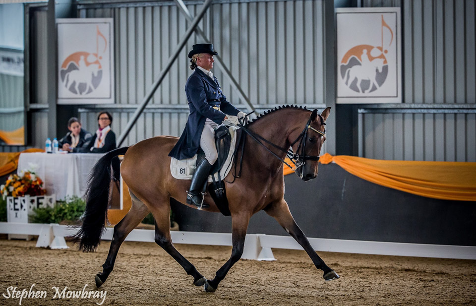 CC_at-Dressage-with-Altitude_2014_03_s