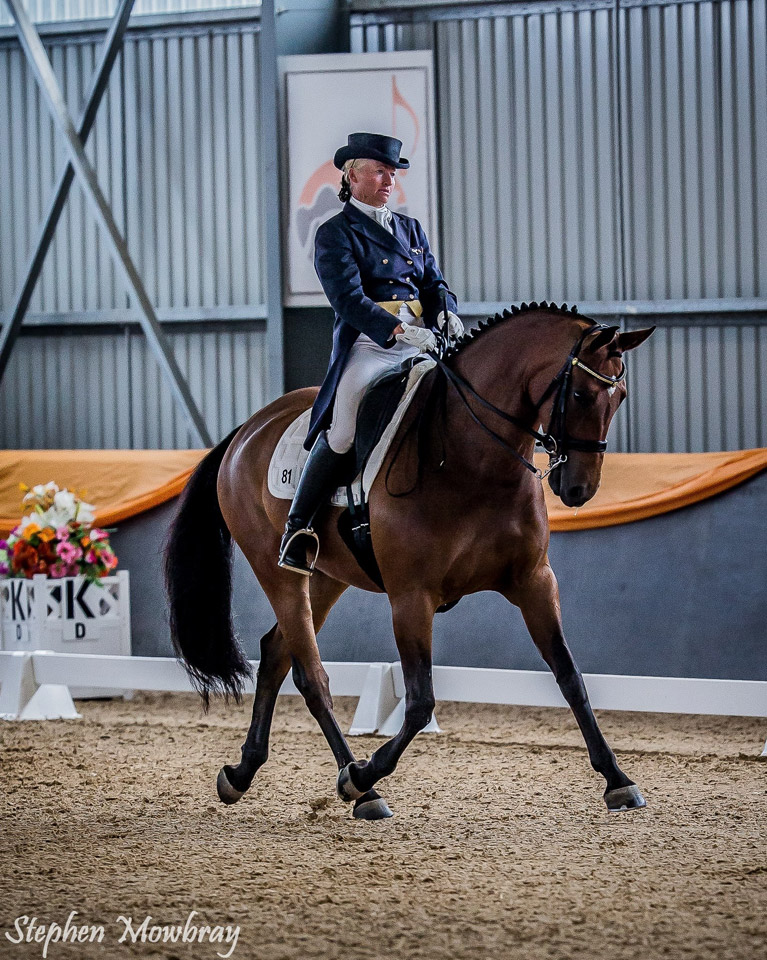 CC_at-Dressage-with-Altitude_2014_05_s