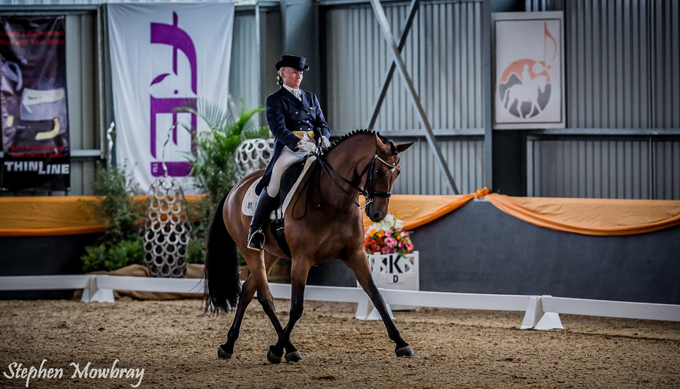 CC_at-Dressage-with-Altitude_2014_09_s