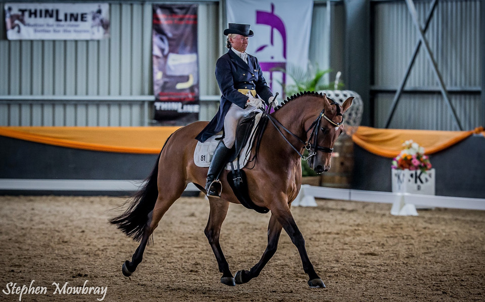 CC_at-Dressage-with-Altitude_2014_10_s