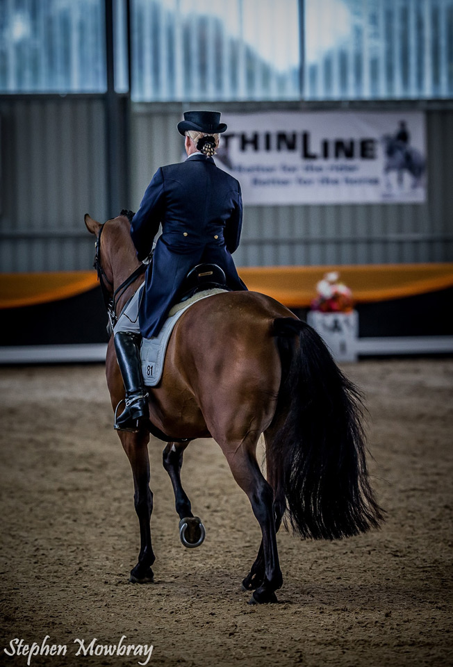 CC_at-Dressage-with-Altitude_2014_11_s