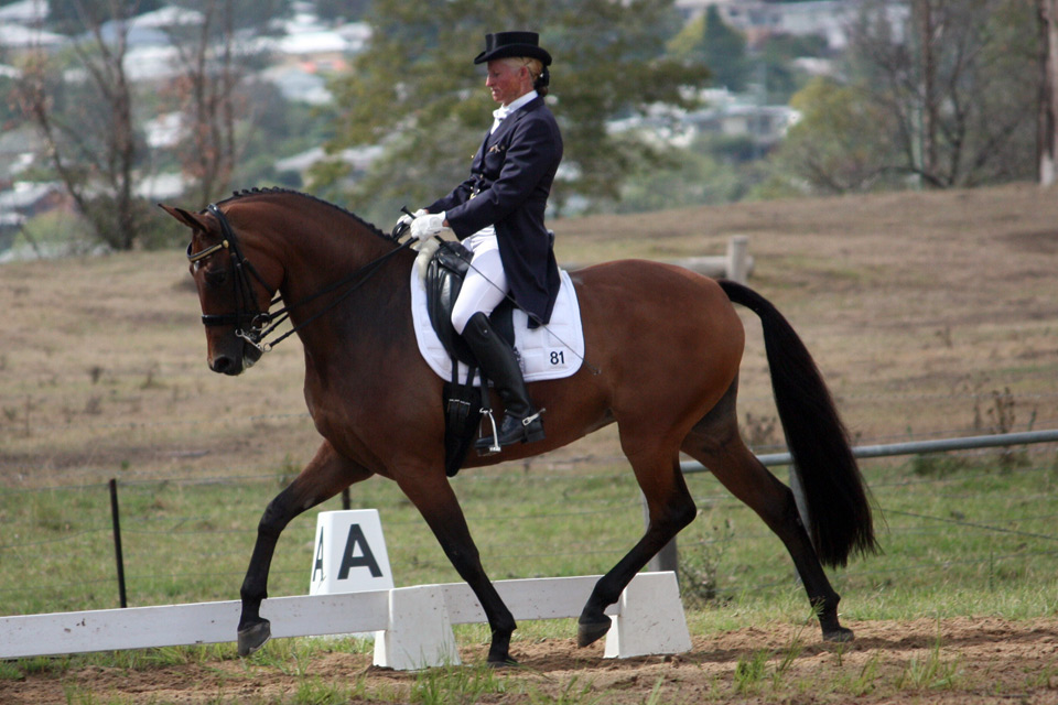 CC by A'Seduction, Grafton Dressage day 2.3.2014
