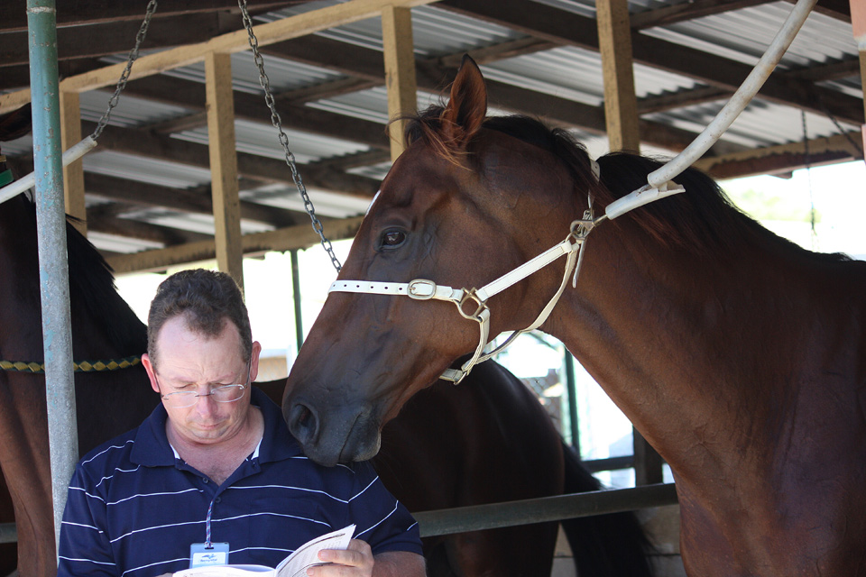 Peter and his racehorse Vilayet studying the form guide!