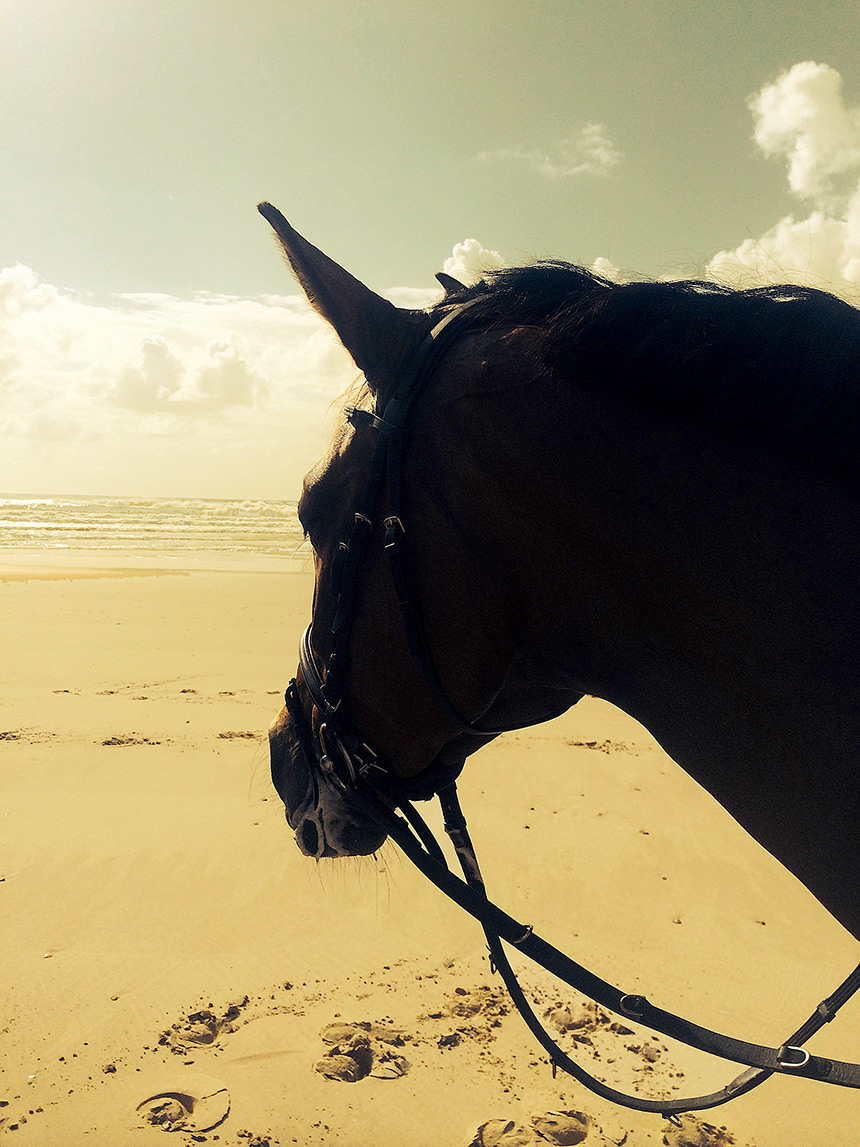 CC meditating on the beach, 13 February 2015