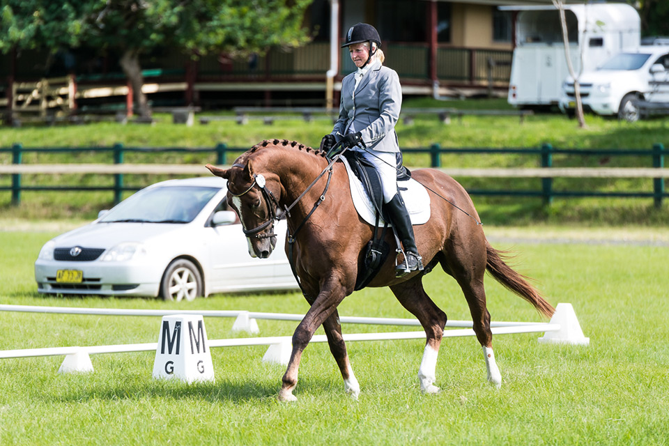 Scuba and Sally competing at Summerland Dressage Club, Bangalow NSW on 18.4.2015