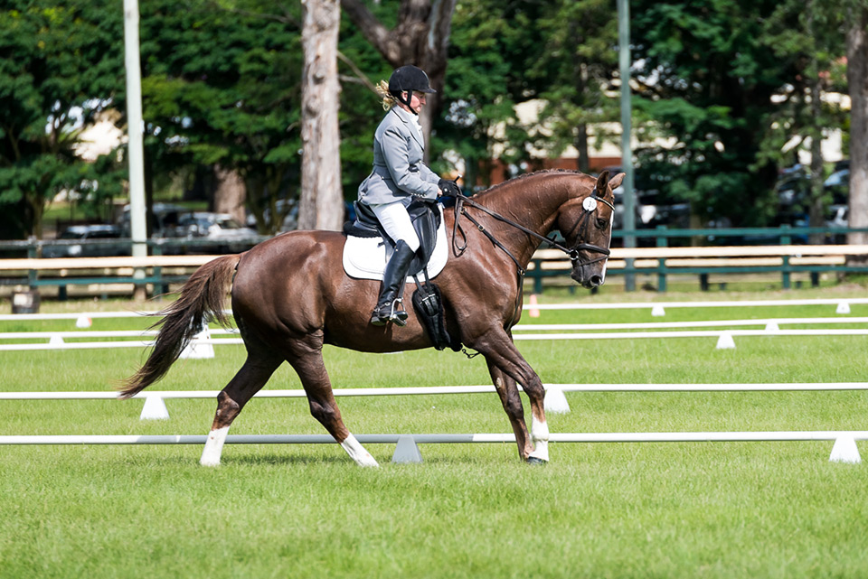Scuba and Sally competing at Summerland Dressage Club, Bangalow NSW on 18.4.20155