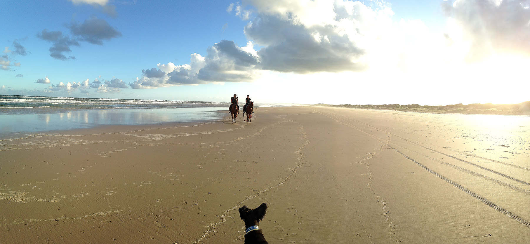 Patti on Penny and Nick on Legs, Patches Beach Feb 2016