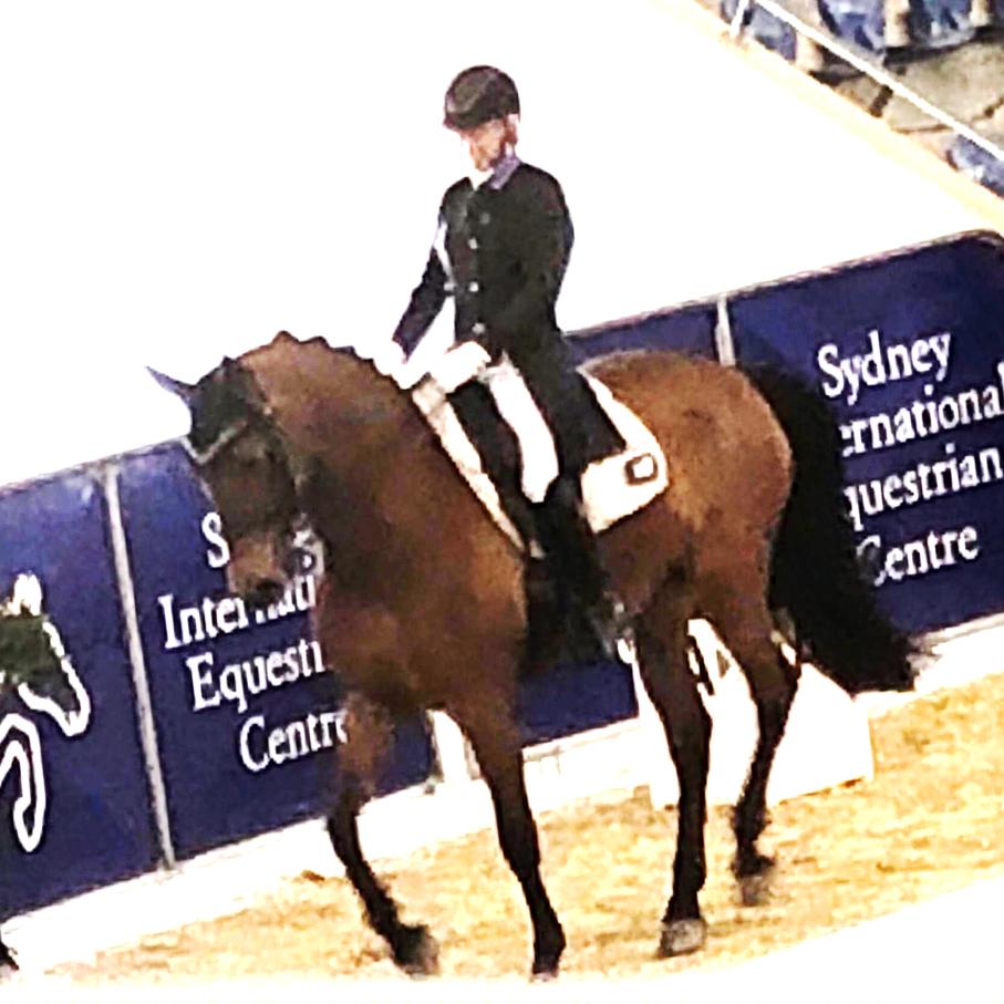 Sally Evans dressage rider Sydney Championships A SpiderBite